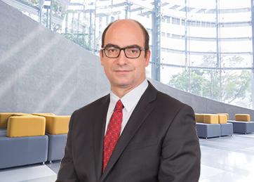 Santiago Sañé, Audit Partner